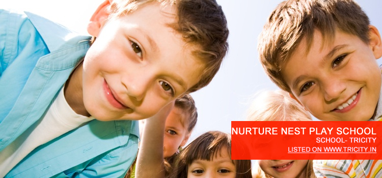 nurture-nest-play-school