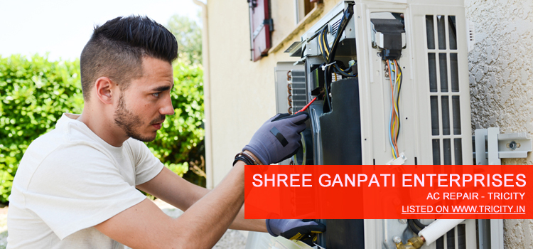 Shree Ganpati Enterprises