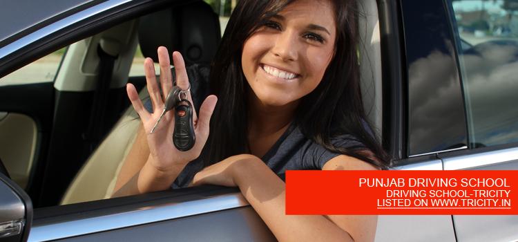 PUNJAB DRIVING SCHOOL