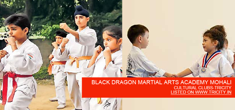 BLACK DRAGON MARTIAL ARTS ACADEMY MOHALI
