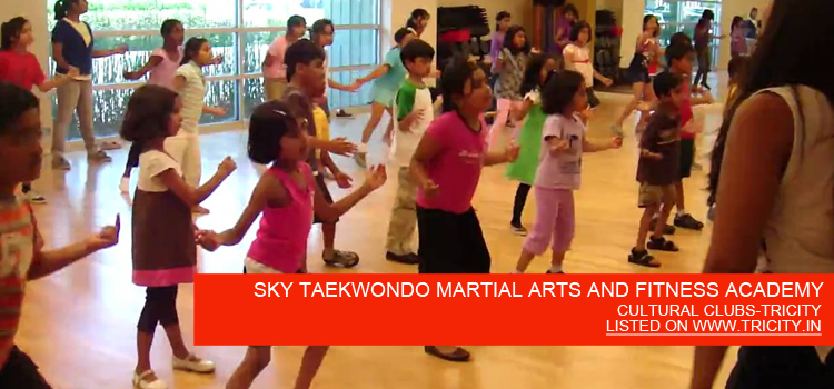 SKY TAEKWONDO MARTIAL ARTS AND FITNESS ACADEMY