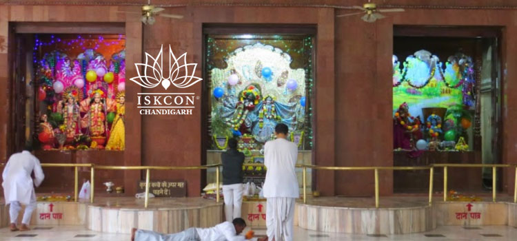 iskcon temple chandigarh, hindu temple in chandigarh, iskcon chandigarh , international society for krishna consciousness, chandigarh temples, iskcon chandigarh guest house, iskcon chandigarh daily darshan, iskcon chandigarh contact number, iskcon temple panchkula Iskcon Temple Chandigarh