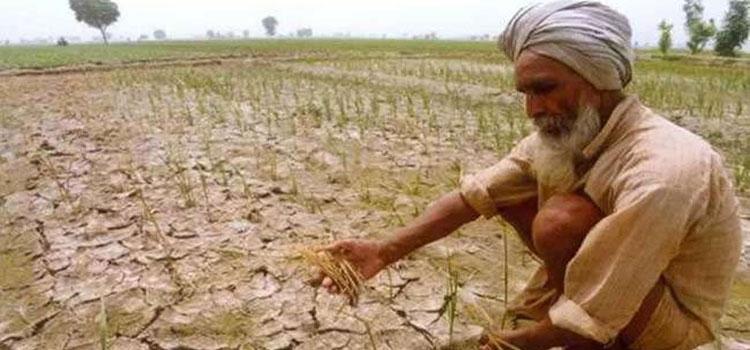 Farmer Debt Waiver