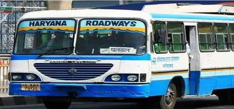 Bus Driver news