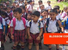 Blossom Convent School