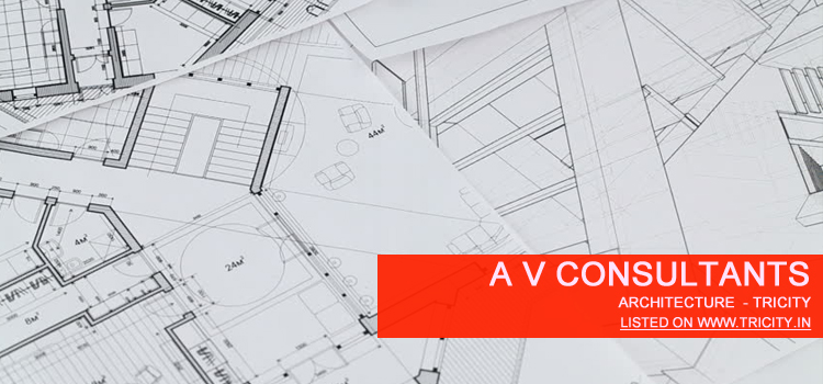 A V Consultants