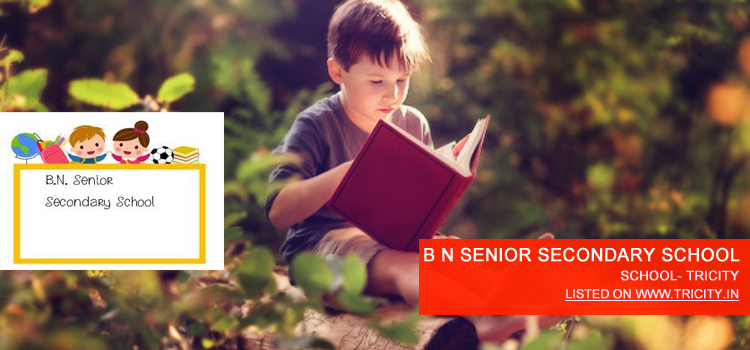 B N SENIOR SECONDARY SCHOOL