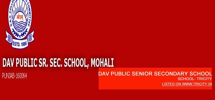 DAV Public Senior Secondary School