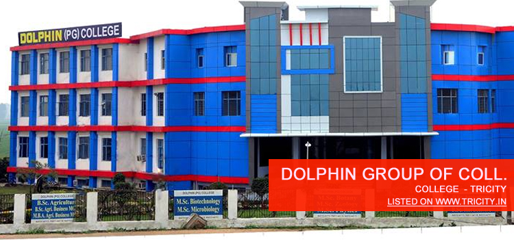 Dolphin Group Of Colleges