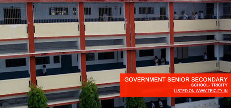 GOVERNMENT SENIOR SECONDARY SCHOOL