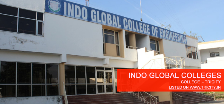 Indo Global Colleges