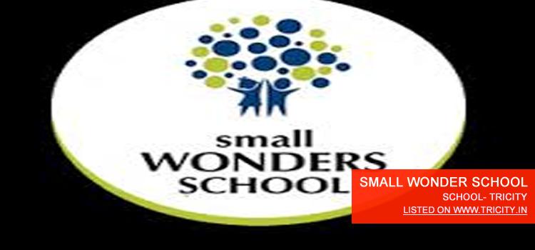 SMALL WONDER SCHOOL
