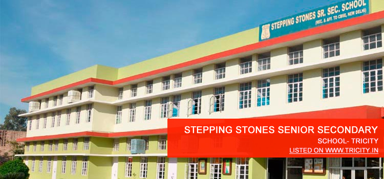 STEPPING STONES SENIOR SECONDARY SCHOOL