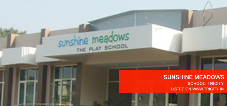 sunshine-meadows