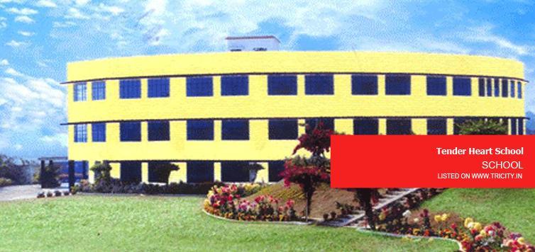 TENDER HEART SCHOOL