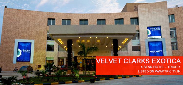 velvet clarks exotica
