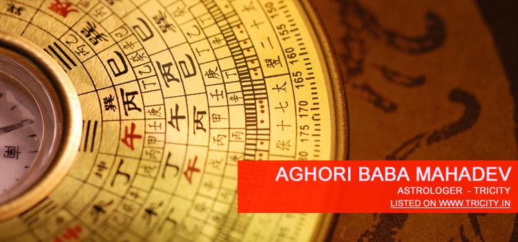 Aghori Baba Mahadev Chandigarh