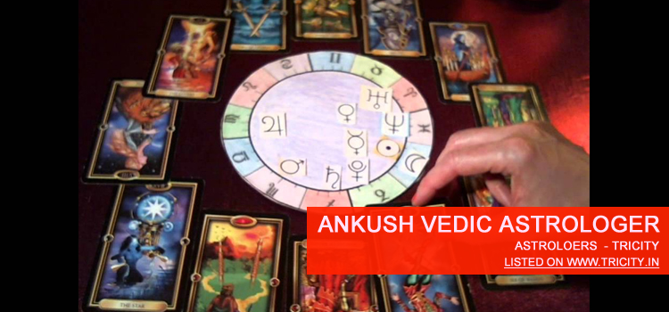 Ankush Vedic Astrologer Chandigarh