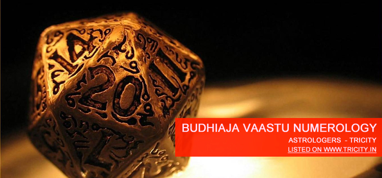 Budhiaja Vaastu Numerology Chandigarh