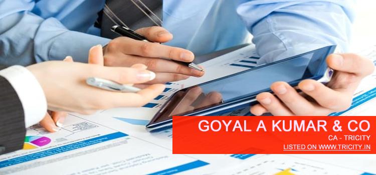Goyal A Kumar & Co Chandigarh
