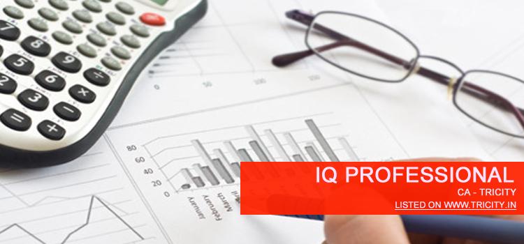 IQ Professional Chandigarh
