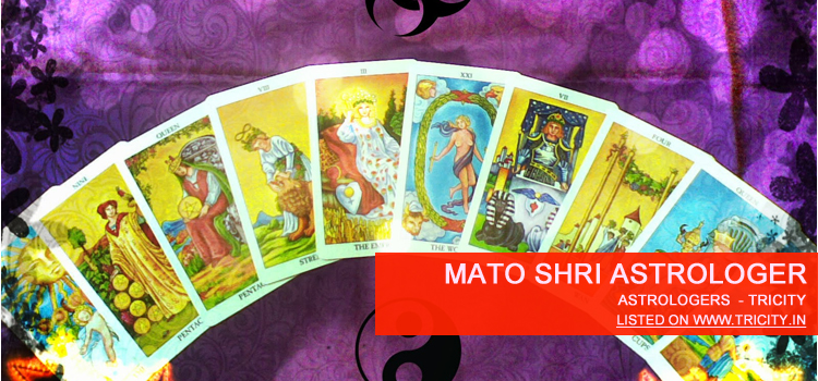 Mato Shri Astrologer Chandigarh