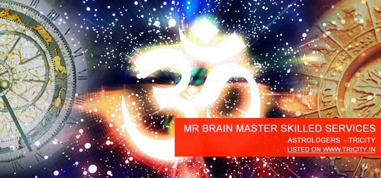 Mr Brain Master Skilled Services Pvt Ltd Chandigarh
