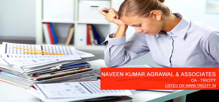 Naveen Kumar Agrawal & Associates Chandigarh