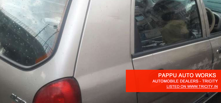 pappu-auto-works