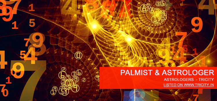 Palmist & Astrologer Mohali