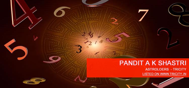 Pandit A K Shastri Chandigarh