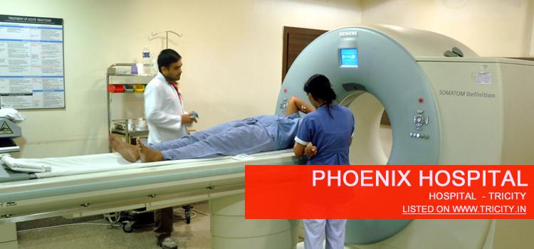 Phoenix Hospital panchkula