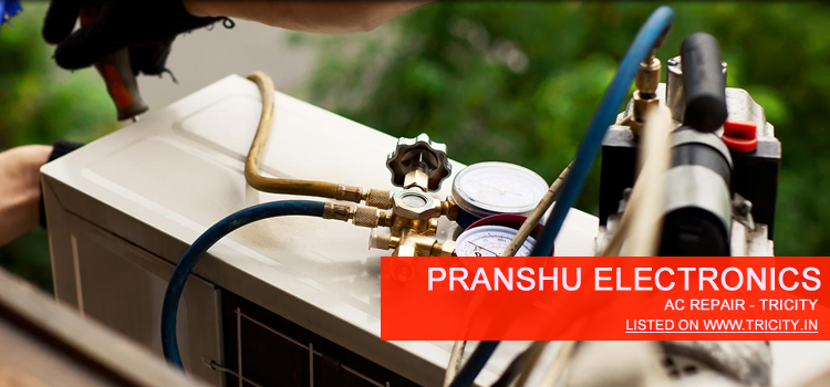 Pranshu Electronics Chandigarh