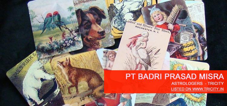 Pt Badri Prasad Misra Chandigarh