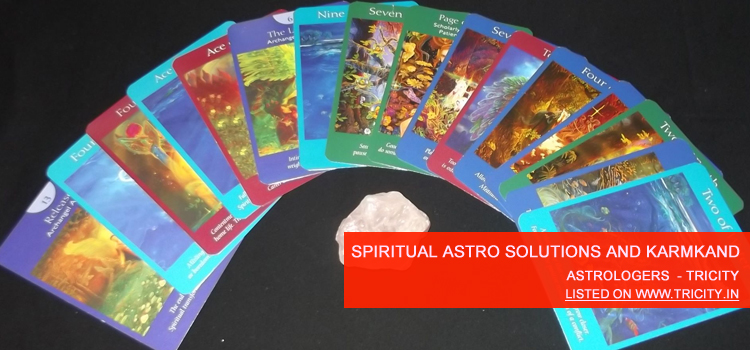 Spiritual Astro Solutions And Karmkand Chandigarh