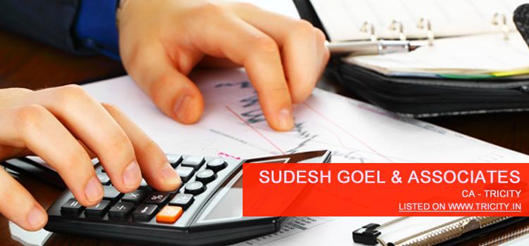 Sudesh Goel & Associates, Chartered Accounntants Chandigarh