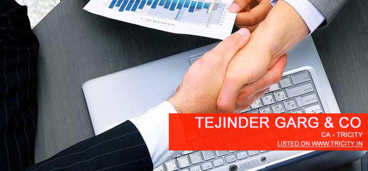 Tejinder Garg & Co Chandigarh