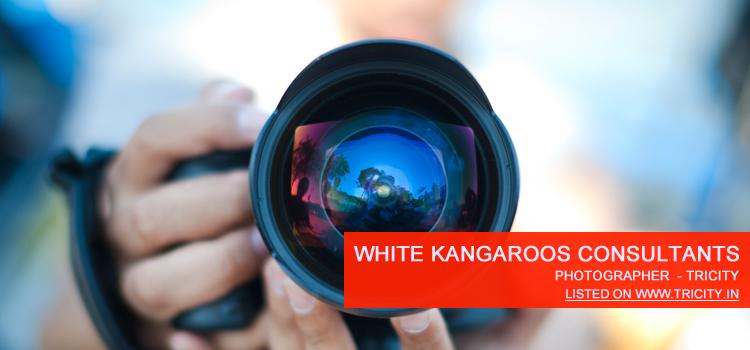White Kangaroos Consultants Chandigarh