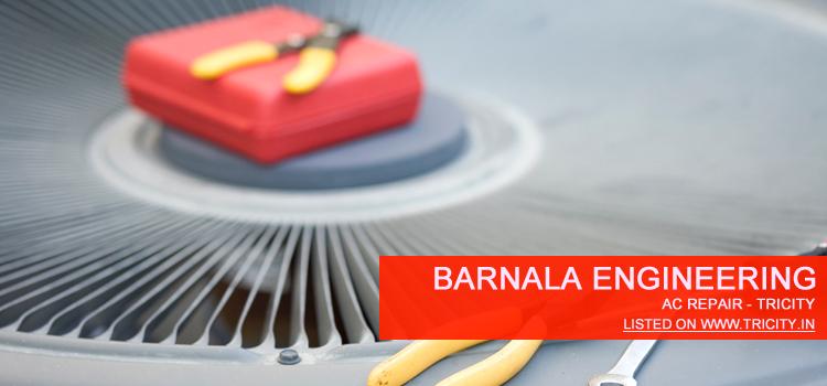 Barnala Engineering Mohali