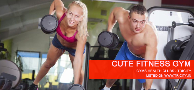 Cute Fitness Gym chandigarh