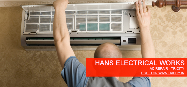Hans Electrical Works