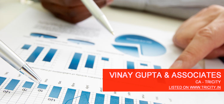 Vinay Gupta & Associates Chandigarh