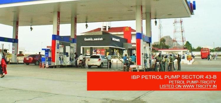 IBP PETROL PUMP SECTOR 43-B