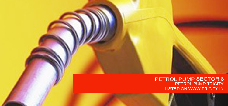 PETROL PUMP SECTOR 8