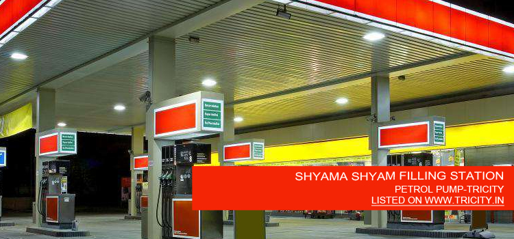 SHYAMA SHYAM FILLING STATION
