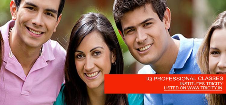 IQ-PROFESSIONAL-CLASSES