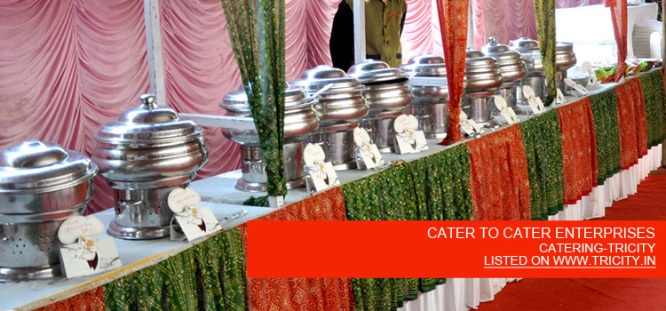 CATER TO CATER ENTERPRISES