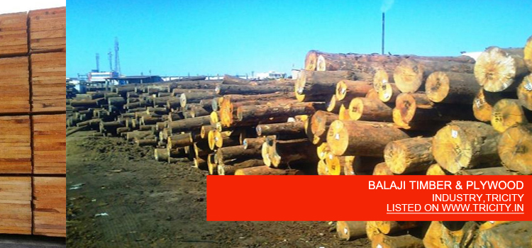 BALAJI TIMBER & PLYWOOD