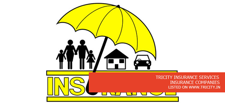TRICITY INSURANCE SERVICES