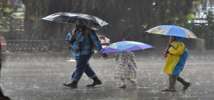 Rain Takes Chandigarh